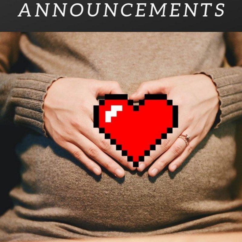 Simple Nerdy Pregnancy Announcements
