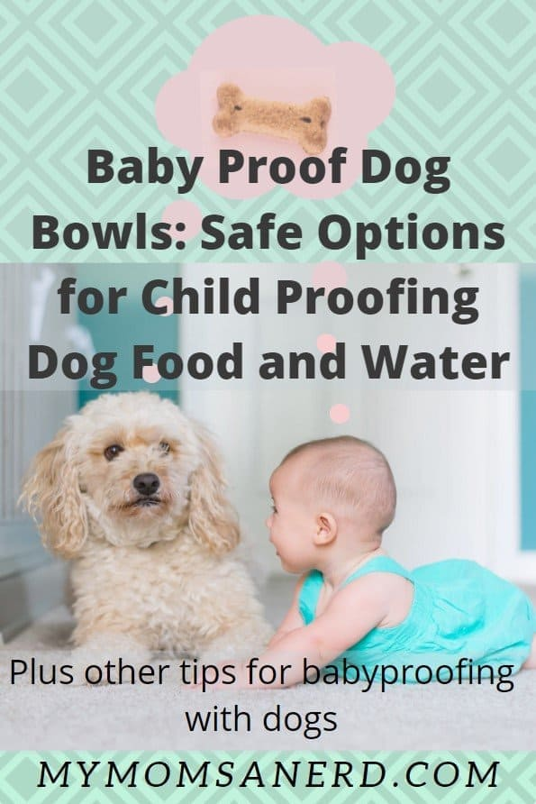 Baby Proof Dog Food and Water Bowls: Plus 12 Tips for Safely Child Proofing Dog Food and Water