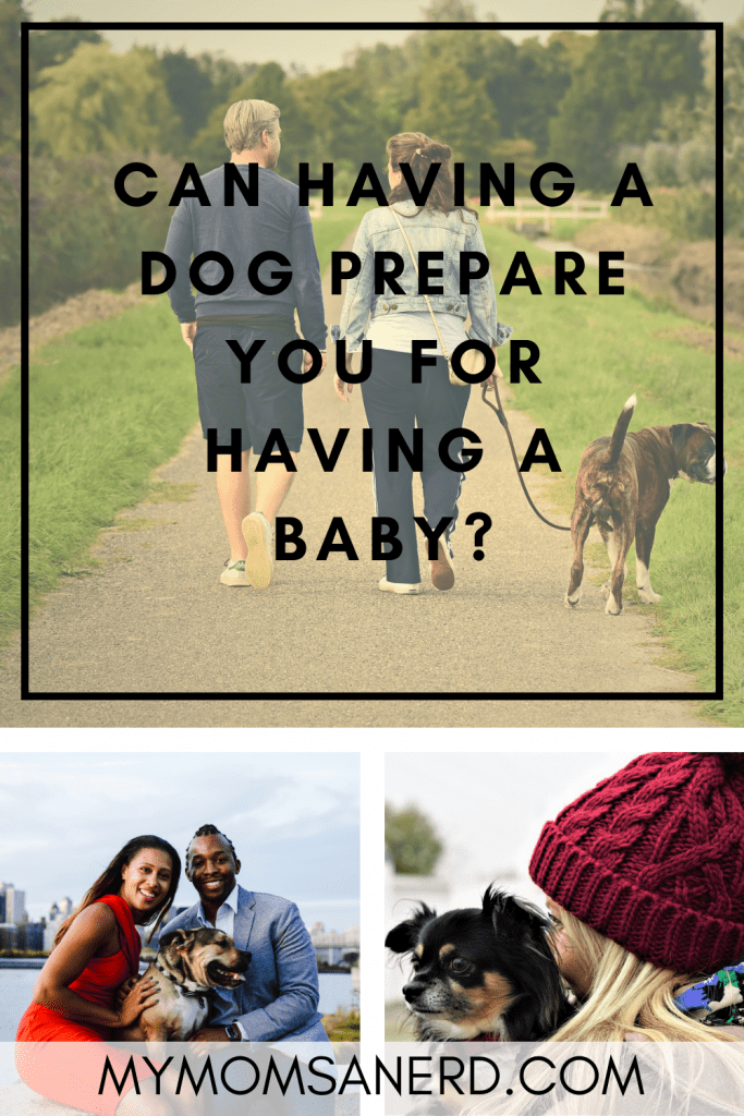 Read more about the article Can Having A Dog Prepare You For Having a Baby?