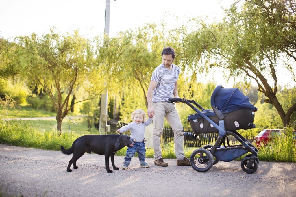 how to prepare a dog for baby - family going on walk